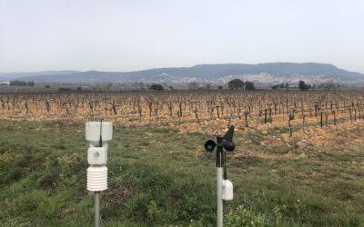 Installation de stations météo au coeur du vignoble de Maison Sinnae